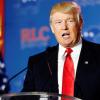 Gespenstische Szenen im Weißen Haus: Einsamer Trump twittert im Bademantel
